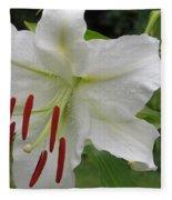Golden Rayed  Lily Fleece Blanket