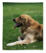 Golden Retriever Dog Laying In The Grass Fleece Blanket