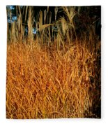 Golden Silver Grass Fleece Blanket