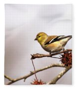 Goldfinch In Sweetgum Fleece Blanket