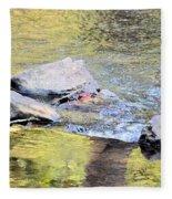 Goldwater Fleece Blanket