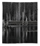 Goose Lake Dusk Fleece Blanket