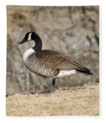 Goose Standing Still Fleece Blanket