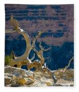 Grand Canyon Dead Tree Fleece Blanket