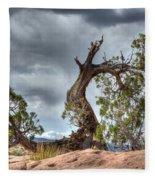 Grand Canyon Facing The Storm Fleece Blanket