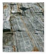 Granite With Quartz Inclusions Fleece Blanket