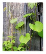 Grape Vines On An Old Barn Fleece Blanket