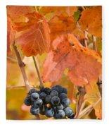Grapes On The Vine - Vertical Fleece Blanket