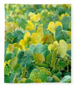 Grapevines In Azores Islands Fleece Blanket