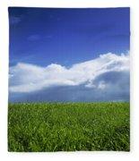 Grass In A Field, Ireland Fleece Blanket
