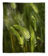 Grass Stems And Seed No.2129 Fleece Blanket