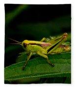 Grasshopper 2 Fleece Blanket
