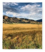 Grassy Plains And Ancient Dunes Fleece Blanket