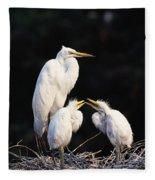 Great Egret In Nest With Young Fleece Blanket