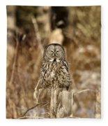 Great Gray Owl Fleece Blanket