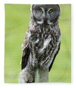 Great Grey Owl, Water Valley, Alberta Fleece Blanket