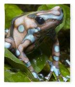 Green And Black Poison Frog Fleece Blanket