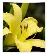 Green And Yellow - Lily Fleece Blanket