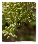 Green Helicid Bee 6 Fleece Blanket