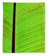 Green Lines Fleece Blanket