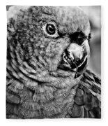 Green Parrot - Bw Fleece Blanket