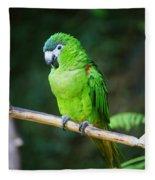 Green Parrot Fleece Blanket