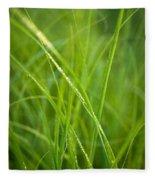 Green Prairie Grass Fleece Blanket