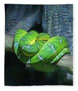 Green Snake Fleece Blanket