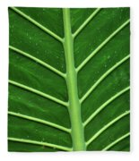 Green Veiny Leaf 1 Fleece Blanket