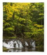Greenstone Falls 4 Fleece Blanket