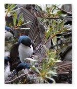 Grey Feathers - Tree Swallow Fleece Blanket