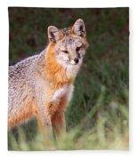 Grey Fox - Vantage Point Fleece Blanket