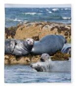 Grey Seals Fleece Blanket