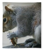 Grey Squirrel Dining Out Fleece Blanket
