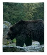 Grizzly Bear Or Brown Bear Fleece Blanket