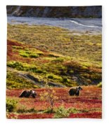 Grizzly Bears And Fall Colours, Denali Fleece Blanket