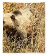 Grizzly In The Brush Fleece Blanket