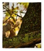 Grooming Grey Squirrel Fleece Blanket