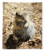 Ground Squirrel Fleece Blanket