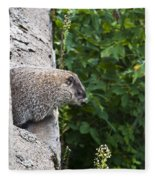 Groundhog Day Fleece Blanket