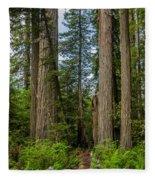 Group Of Redwoods Fleece Blanket