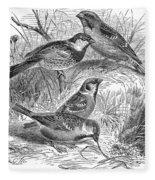 Group Of Sparrows Fleece Blanket