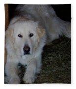 Guarding The Barn Fleece Blanket