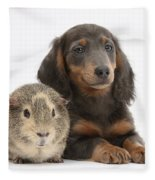 Guinea Pig And Blue-and-tan Dachshund Fleece Blanket