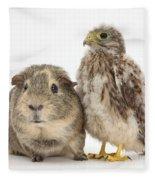 Guinea Pig And Kestrel Chick Fleece Blanket