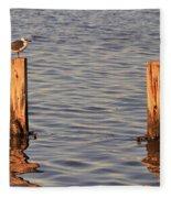 Gull At Sunset Fleece Blanket