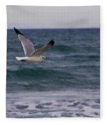 Gull In Flight Fleece Blanket
