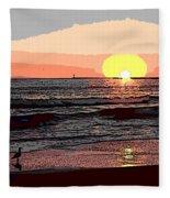 Gulls Enjoying Beach At Sunset Fleece Blanket