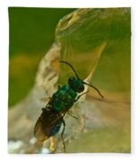 Halicid Bee 12 Fleece Blanket