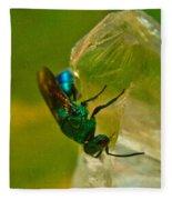 Halicid Bee 20 Fleece Blanket